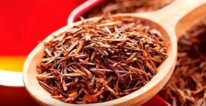 Propiedades del té de Rooibos